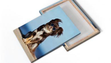 Photo of Mounted Canvas Prints: 1.5″ Gallery Edges